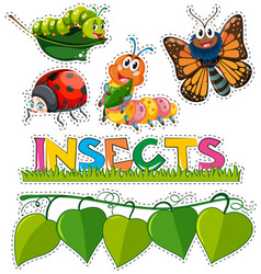 sticker set with different insects in garden vector image vector image