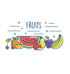 tasty fruits food nutrition diet vector image vector image