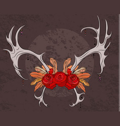 Color deer antlers with roses and feathers boho vector