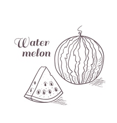 Engraved watermelon with slice vector