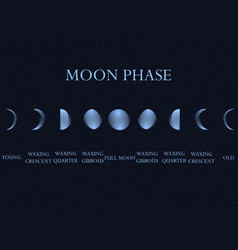 Phases of the moon the whole cycle from new moon vector