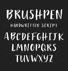 handwritten brush painted font vector image