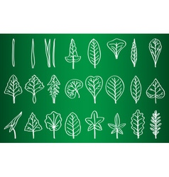 Collection of leaf silhouettes on school board vector