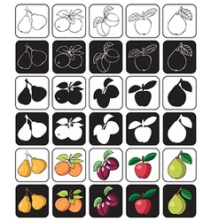 Fruit icon apple pear plum apricot vector