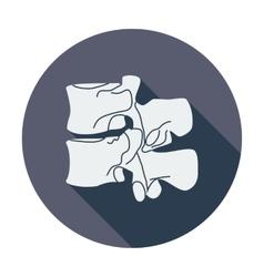 Anatomy spine icon vector image vector image