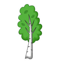 birch tree icon cartoon style vector image