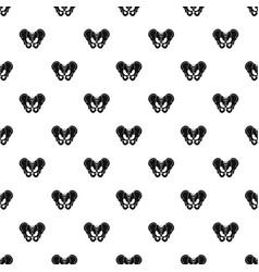 Pelvis pattern vector