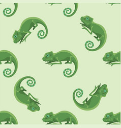 reptile chameleon amphibian seamless pattern vector image vector image