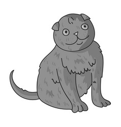 Scottish fold icon in monochrome style isolated on vector