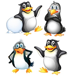 Four playful penguins vector image
