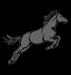 jumping black horse hand drawn vector image