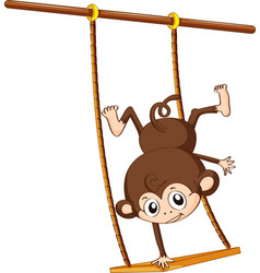 Monkey and swing vector image