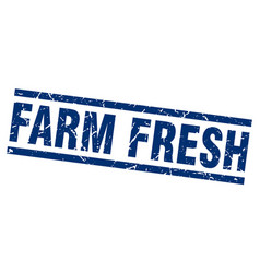 Square grunge blue farm fresh stamp vector