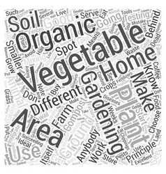 You can do organic vegetable gardening at home vector