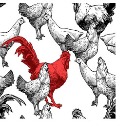 Pattern with hens and red cock vector