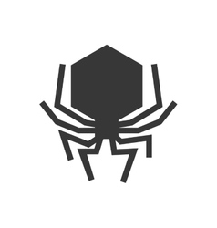 Bug icon insect design graphic vector