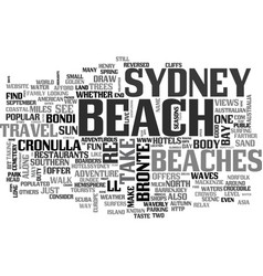 beaches for fun in the sun text word cloud concept vector image vector image