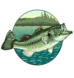 big mouth bass vector image vector image