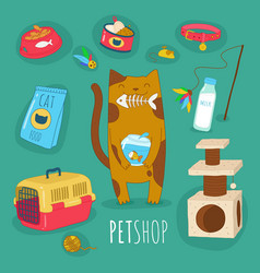 Cats and dogs border set front view and rear view vector