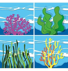 Coral reef under the sea vector
