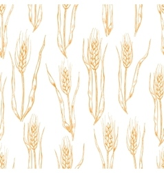 Hand drawn wheat ears seamlless pattern vector