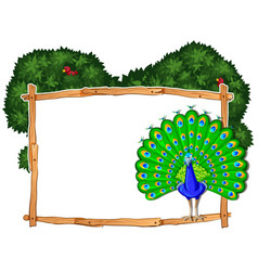 Frame template with peacock in bush vector
