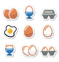 Egg fried egg egg box icons set vector image