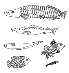 Set with fishes vector