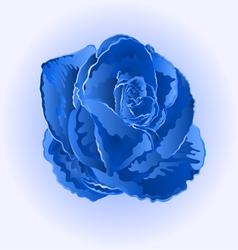 Flower blue rose beautiful rose simple vector