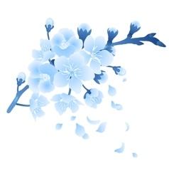 Graphic sakura flowers vector image