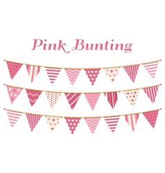 Pink bunting vector