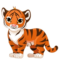 Baby tiger vector