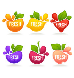 Collection of fresh stylized fruits and berries vector
