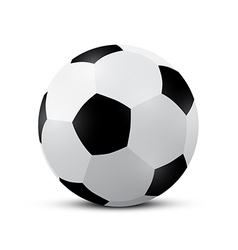 Football - soccer ball vector
