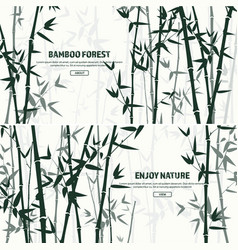 Bamboo forest set nature japan china plant vector