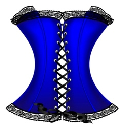 blue corset vector image vector image