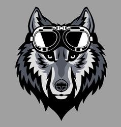Wolf head wearing a goggle vector