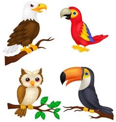 Bird cartoon collection vector