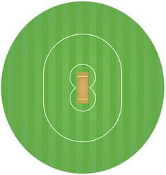 Cricket field vector