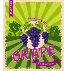 Grape retro poster vector image vector image