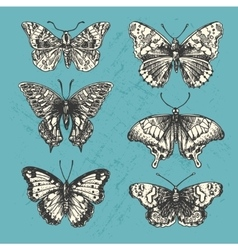 Hand drawn butterflies vector
