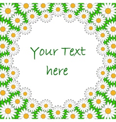 Design colorful chamomile background for text vector image