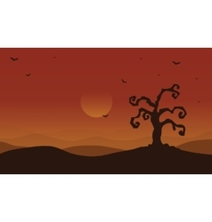 Scenery dry tree and bat at afternoon halloween vector