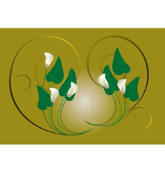 Flowers white callas on a green background vector