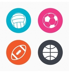 Sport balls volleyball basketball soccer vector