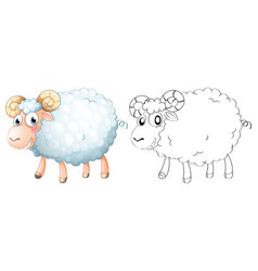 Animal outline for sheep vector