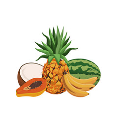 fruits tropical food harvest delicious set vector image
