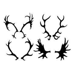 set of silhouettes of deer and elk horns vector image