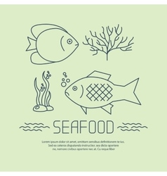 Seafood icon with fishs and seaweed vector