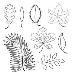Different leaves contour plot vector